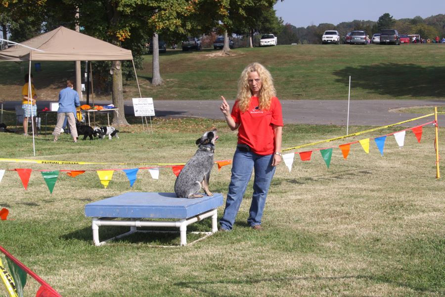 Woman Doing Dog Demonstration